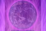 llama violeta tiera