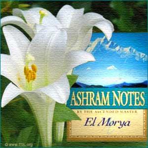 ashram notes affirmacion