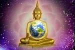 buddha llama violeta terra