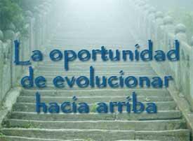 La oportunidad de evolucionar hacia arriba