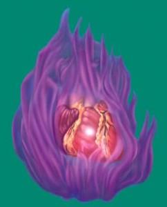visualiza la llama violeta