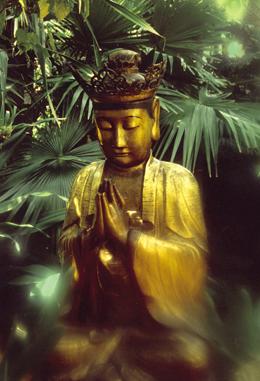 Gautama Buddha meditating