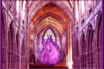 llama violeta cathedral