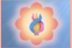 La corazon de la bondad