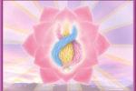 inicio armonia corazon